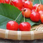 奥ゆかしい和の宝石。日本古来のフルーツ達!