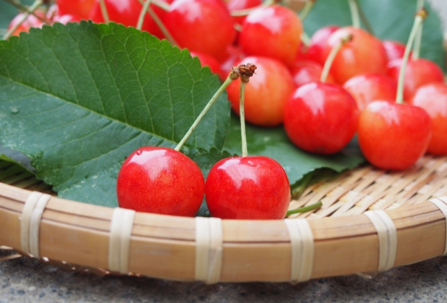 和の宝石 日本のフルーツ 果物