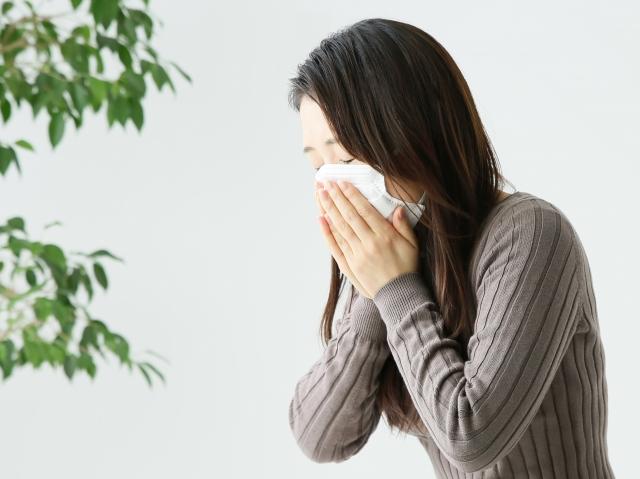 花粉症 対策 スタート 早め